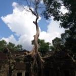 カンボジア旅行 !トゥクトゥクで巡るアンコール遺跡&観光名所 ~払い過ぎたかもしれません~